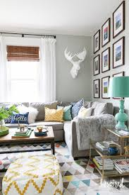 Gray And Beige Living Room by Throw Pillows For Grey Couch And Elegant Living Room Photo In