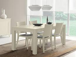 tavoli e sedie per sala da pranzo cucine sedia pranzo fabulous sedie soggiorno in sedia sala da