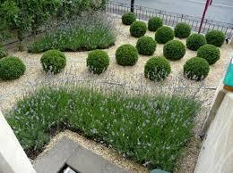 Small Garden Plant Ideas Explore Gardens Modern And More Small Garden Search Ogrody