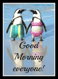 Penguin Birthday Meme - good morning everyone anniversary beach getaways pinterest