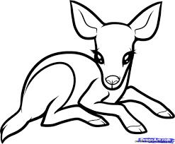 cute easy drawings of baby animals