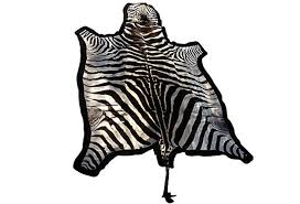 Cheap Animal Skin Rugs Rugs Unique Interior Rugs Design With Exciting Zebra Skin Rug
