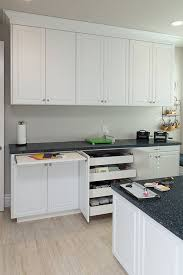 Craft Room Cabinets 20 Best Craft Room Images On Pinterest Kitchen Cabinets