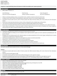 standard resume sample resume template executive executive