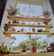 kitchen window shelf ideas 47 best window gardens images on indoor herbs plants