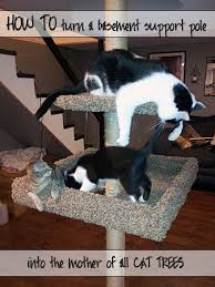 how to build a cat tree around a basement support pole screwed