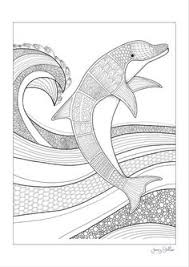 Seeking Dolphin Free Coloring Page Dolphin Sea From The Seeking