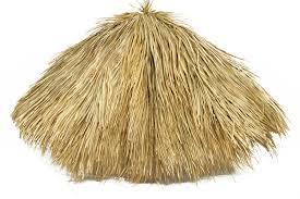 charming decoration palapa thatch fetching backyard palapa kits