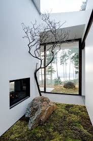 Home Design Indoor Small Garden Ideas With Moss And Branch - Interesting home decor ideas