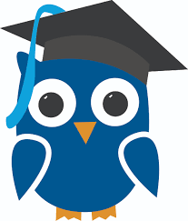 owl online written work and lessons