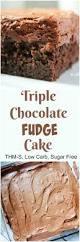 best 25 diabetic chocolate cake ideas on pinterest diabetic