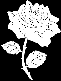 pretty rose coloring page free clip art
