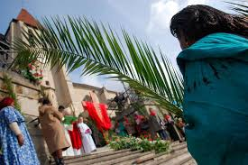 palm branches for palm sunday why are palm branches used on palm sunday