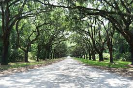 visit savannah georgia the official travel tourism guide to other locations