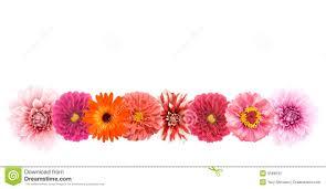 Cheap Wallpaper Border Cheap Flower Wallpaper Border Find Flower Wallpaper Border Deals