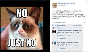 Grumpy Cat Sleep Meme - waco can sleep soundly the catnapping lady is a fake catster