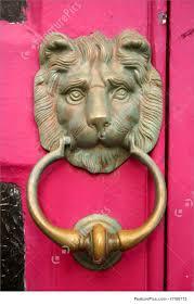 lion door knocker picture of brass lion door knocker
