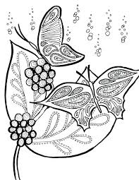 detailed butterfly coloring pages for adults detailed butterfly coloring pages printable butterfly coloring pages