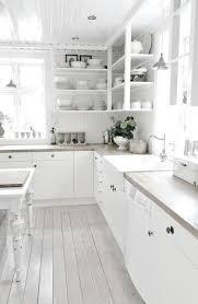 White On White Kitchen Ideas 231 Best Kitchen U0027s Images On Pinterest Dream Kitchens White
