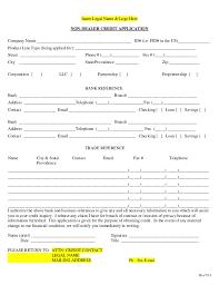 non dealer credit application template