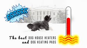 house dogs 5 best dog house heaters for winter 2017 edition
