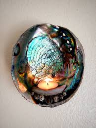 Shell Sconces Shell Candle Holder Abalone Paua Wall Sconce By Thefilthybeast