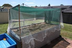 beautiful shade cloth over vegetable garden diy raised garden bed