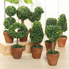 plastic garden grass ball topiary tree pot dried plant for wedding