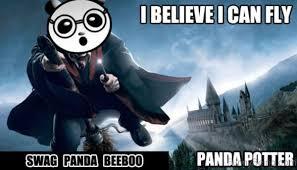 I Believe I Can Fly Meme - 80 cute panda memes
