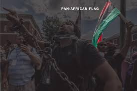 What Colour Is The South African Flag What Do The Flags Chants And Symbols Spotted In Charlottesville