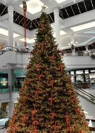 giant christmas trees barrango inc
