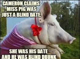 Blind Date Funny Pig Meme Best Collection Of Funny Pig Pictures