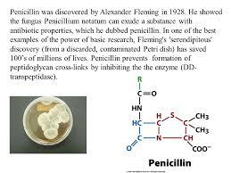 biochemistry i chapter 11 enzymatic catalysis dr loren williams