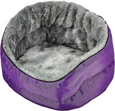 small pet beds small pet beds hammocks free shipping at chewy com