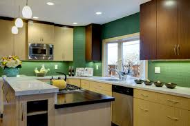 Crystal Kitchen Cabinets Bamboo Wenge Kitchen Cabinets By Crystal Contemporary Kitchen