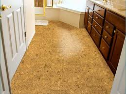 Cork Floor Kitchen by Best Collections Of Cork Flooring For Bathroom All Can Download