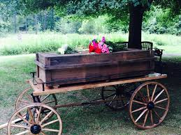 funeral casket could the funeral of the future help heal the environment