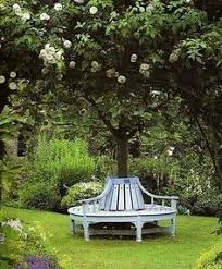 Circular Bench Around Tree What A Lovely Idea If I Only Had A Tree Like This To Build The