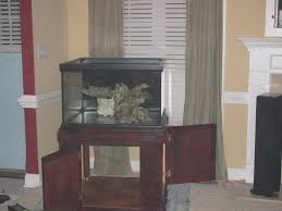 shallow tank rock work help show me your tank please reef2reef
