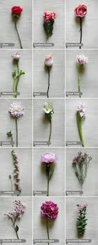 wedding flowers types learn all about different types of flowers from roses and lilies