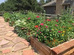 Urban Garden Denver - the largest barrier to gardening in colorado urban farm colorado