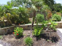 pool garden ideas seeking pool landscaping ideas in texas pool has direct sun