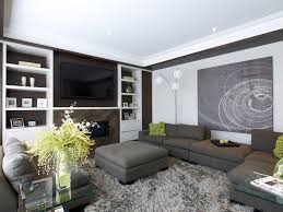 Large Grey Area Rug Shaggy Rugs In Family Room Contemporary With Pallet Shelves Next