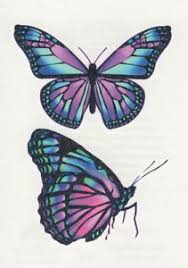 butterfly tattoos butterfly meaning and small butterfly