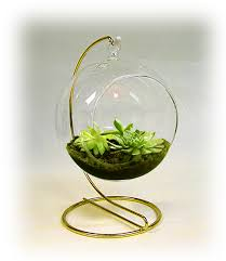 hanging terrarium or bud vase with or without display stand
