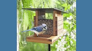 Cool Bird House Plans by Cool Window Bird Feeder Plan 28 Free Bird Feeder Plans Wood Diy
