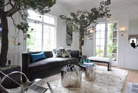 decorating with indoor plants and trees belgian pearls