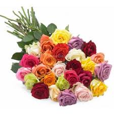 Colored Roses Order Online 25 Multi Colored Roses Flower Delivery Dubai Abudhabi