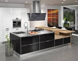 Contemporary Kitchen Cabinets 225 Modern Kitchens And 25 Contemporary Kitchen Designs In Black