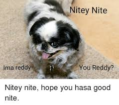 Good Nite Memes - ima reddy nite nite you reddy nitey nite hope you hasa good nite